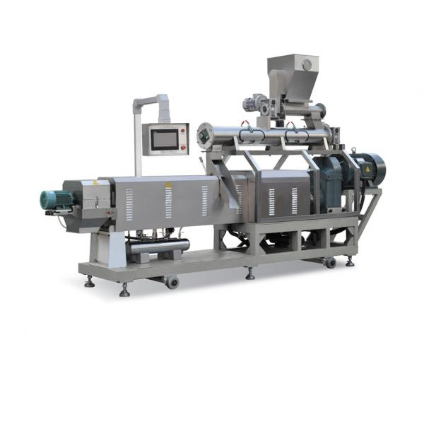 Continuous Automatic Extruded Pet Food Production Line Making Machines with Great Reputation #1 image