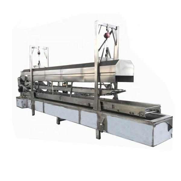 Eco-Friendly Recycling PS Foam Container Production Line #1 image